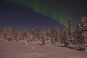 Nordlicht/Polarlicht über dem Lappland