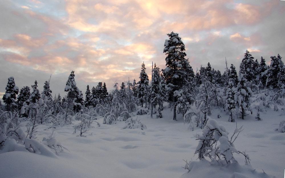 Die erste Sonne über dem Lappland nach der Polarnacht
