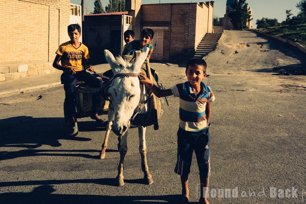 Mehrere Jungs die grade mit einem Esels-Karren unterwegs sind. Samarkand, Usbekistan.