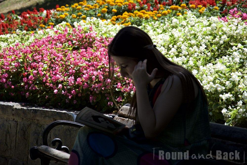Junges Mädchen das im Park sitzt und völlig in ihr Buch vertieft ist, Streetfotografie